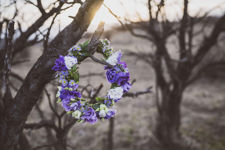 lila Blumenkranz hängt in Baum
