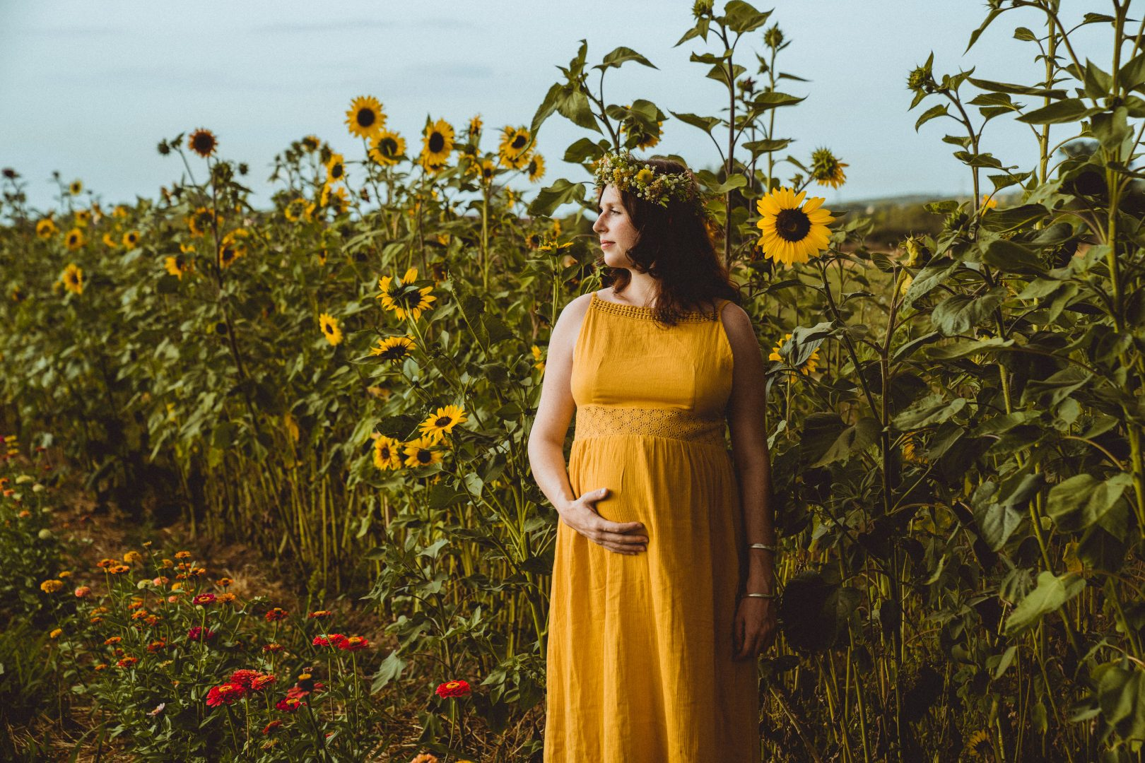 Schwangere steht vor Sonnenblumenfeld